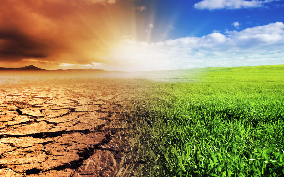 LIFE launches grant round for European environmental projects